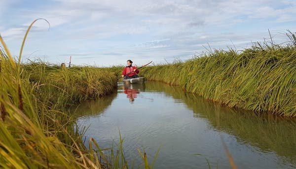 Sit on top Kayak verhuur Waterland