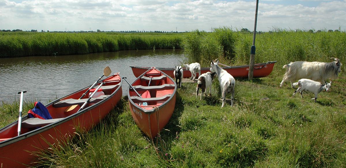 Kanotocht Waterland, Experiencewaterland.nl