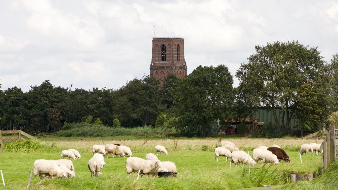 Experience Waterland Ransdorp kerk