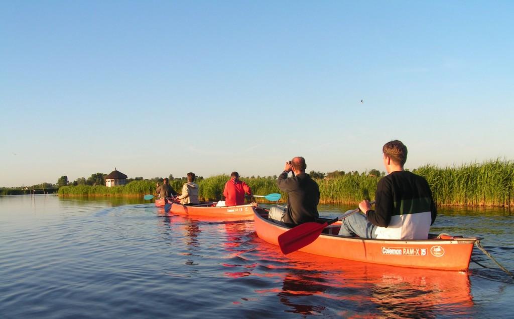 Canoe safari Waterland