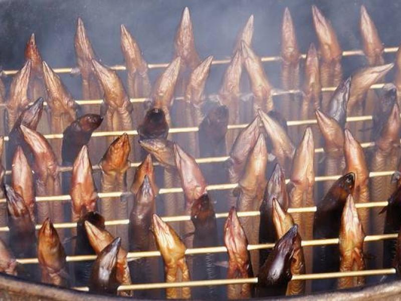 Bedrijfsuitje Cursus paling  en garnalen roken